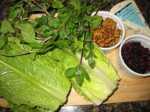 Ingredients for Recipe for Salad with Romaine, Mint, Dried Cranberries, Candied Walnuts, and Gorgonzola