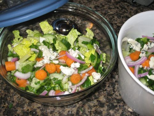Recipe for Creamy Blue Cheese Salad with Crunchy Vegetables