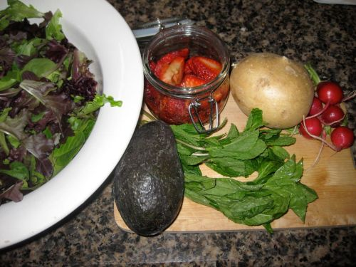 Ingredients for Recipe for Spring Salad with Strawberry Balsamic Vinaigrette, Avocado, Jicama, and Radishes
